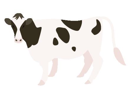 せたな町の酪農・畜産農家